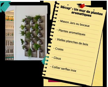 Kideaz-DIY-Plantes-aromatiques