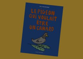 kideaz-pigeon-cannard-couv