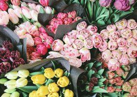 kideaz fleurs