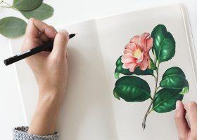 kideaz dessin fleur