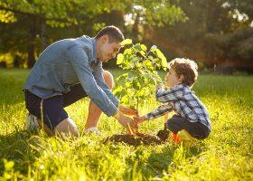 kideaz- ecologie -enfant-parent-sensibilisation-nature