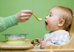 kideaz nutrition bebe alexaltitude