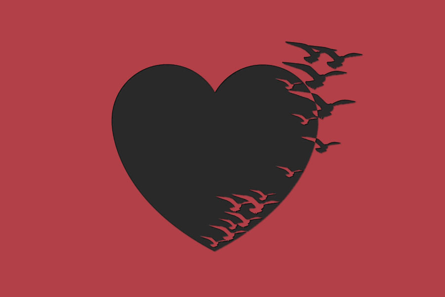 kideaz coeur oiseau envole saint valentin
