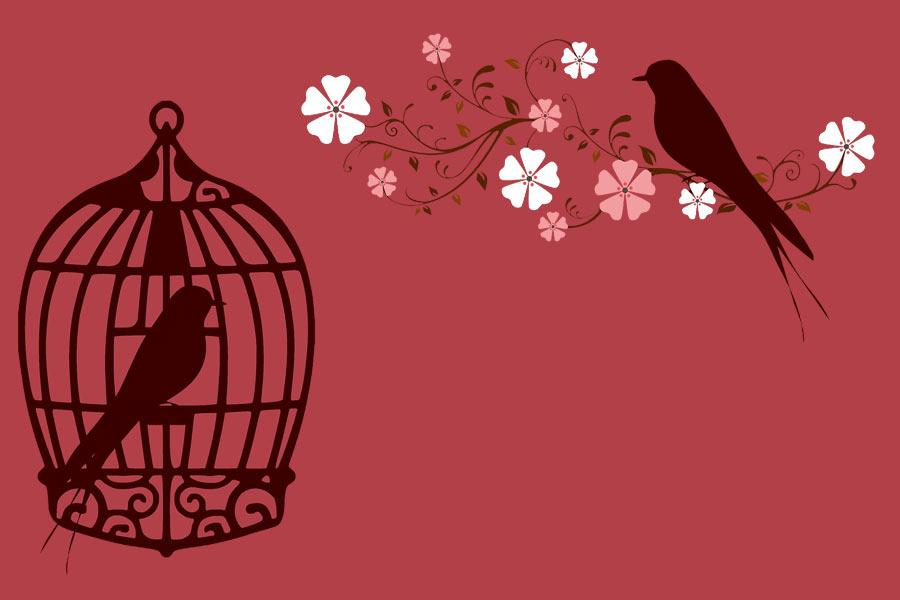 kideaz oiseaux cage branche fleur