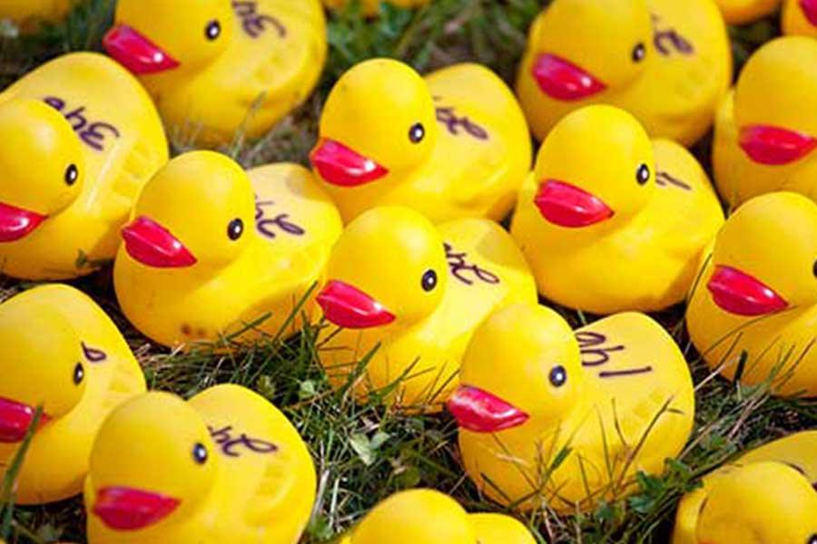 kideaz top5 duck race
