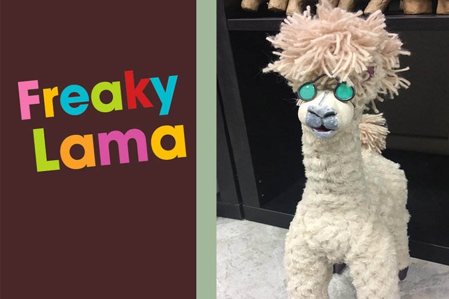 kideaz stage vacances madart freaky lama
