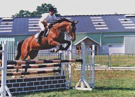 kideaz ecole equitation dominique remy 4