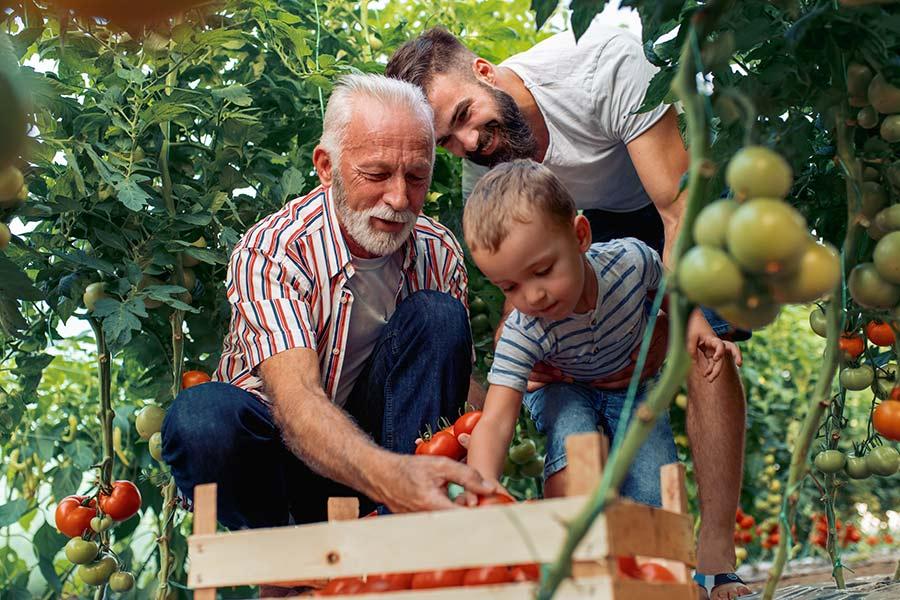 kideaz cueillette famille legumes fruits saison
