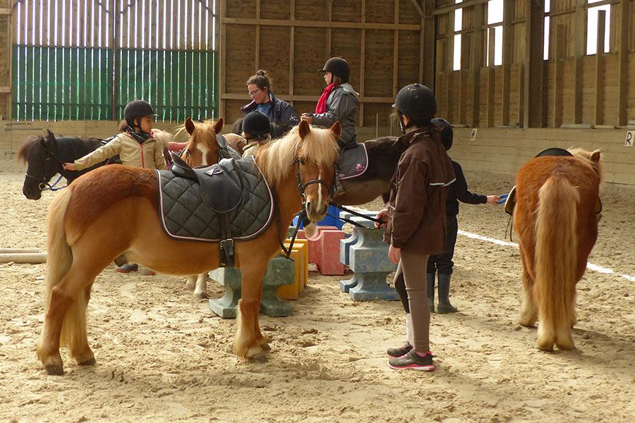 kideaz ferme pedagogique naut poney enfants 2
