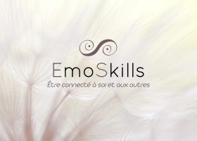 kideaz emoskills article luxembourg formations banner