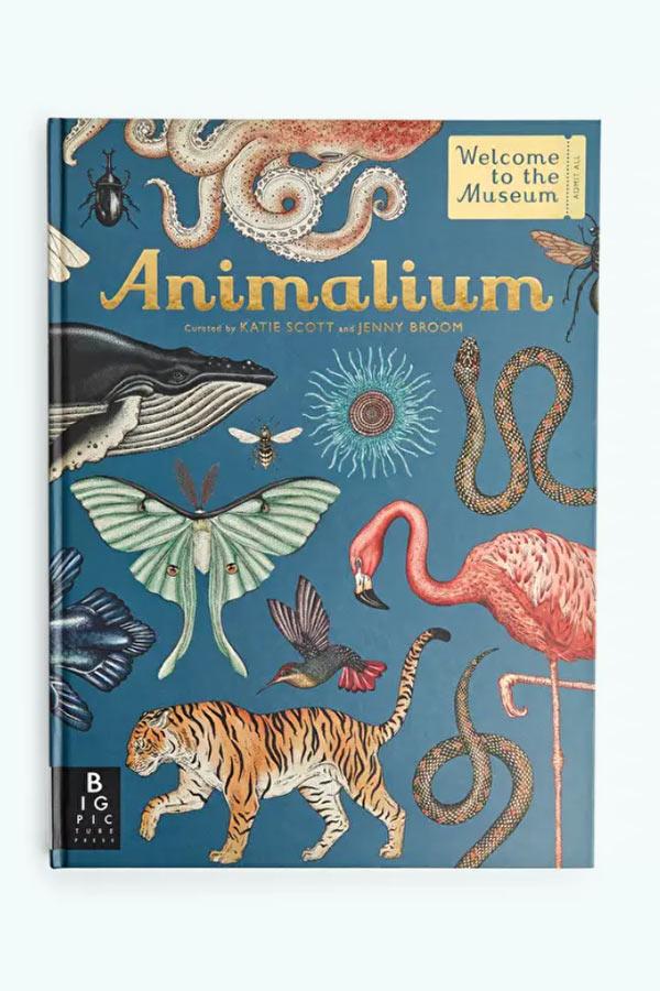 kideaz cloche dor cadeau noel animalium livre