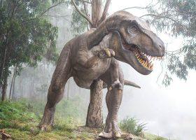 kideaz dinosaure jurassique