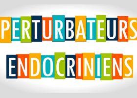 kideaz-perturbateurs-endocriniens-adnl