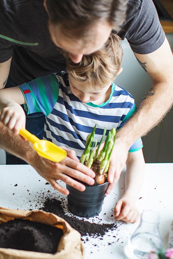 kideaz jardinage enfant parent jardin potager legumes verticale