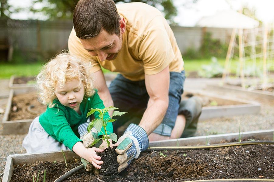kideaz jardinage potager enfant parent jardin