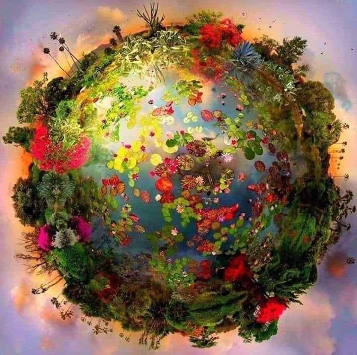 kideaz planete regenerescence fleurir respirer coronavirus