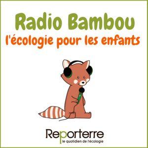 kideaz radio bambou podcast ecologie enfants