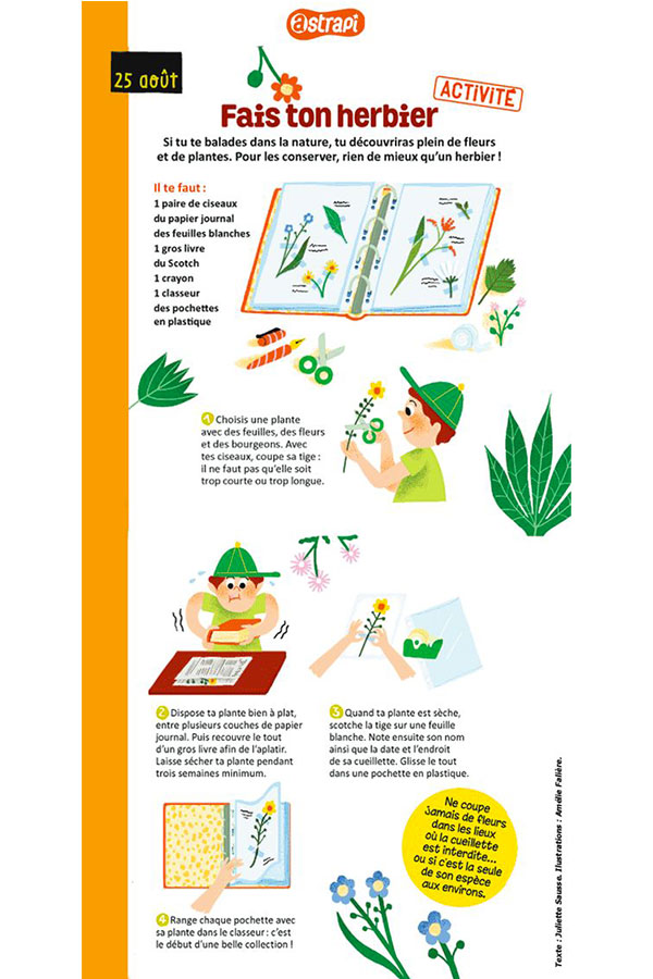 kideaz diy herbier enfant foret nature copyright astrapi