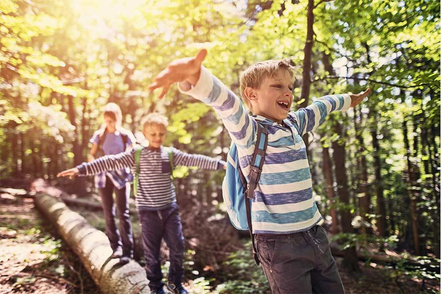 kideaz enfants nature foret
