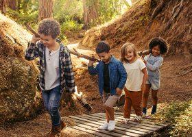 kideaz aventures enfants activite plein air nature foret