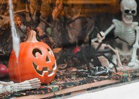 kideaz halloween citrouille araignée squelette