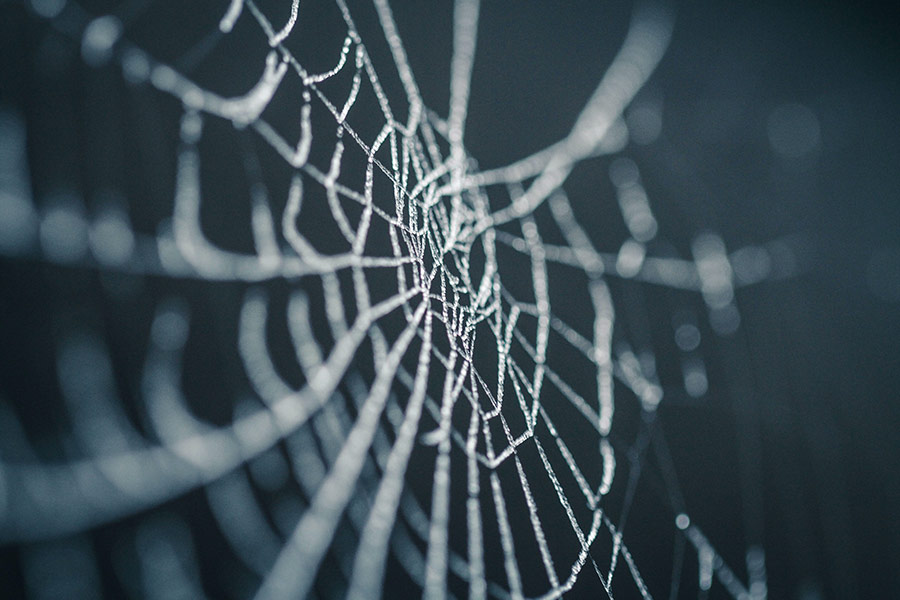kideaz toile araignee halloween