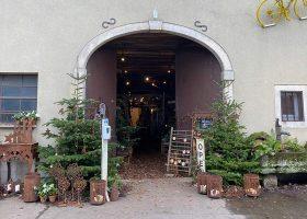 kideaz boutique fleuriste de fleurs en fleurs schifflange noel