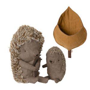 kideaz copyright pall center hedgehog in a leaf
