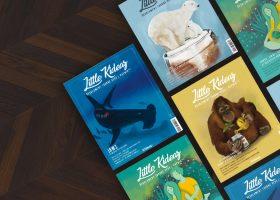little kideaz magazine ludo educatif famille enfants abonnement