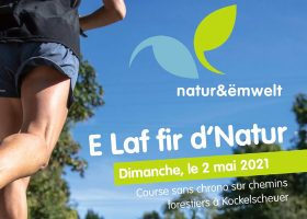 kideaz copyright natur&ëmwelt E Laf fir d'Natur 2021