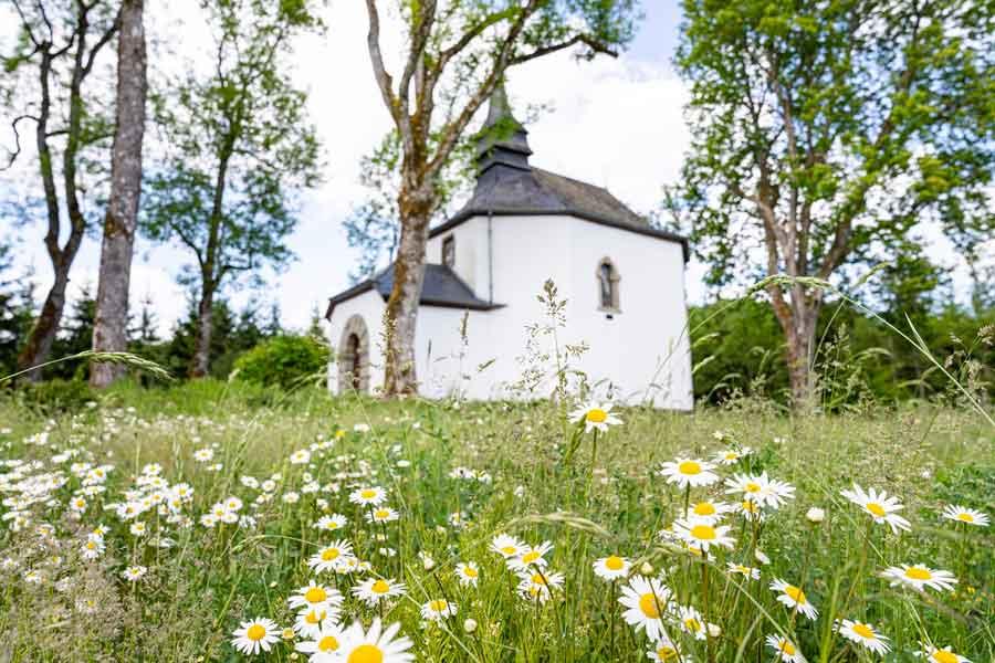 kideaz copyright naturpark oewersauer visite guidee st.pirmin