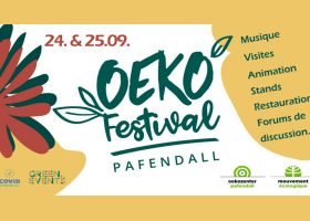 kideaz copyright oekofestival pafendall 2021