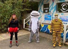 kideaz copyirght aquarium amneville halloween