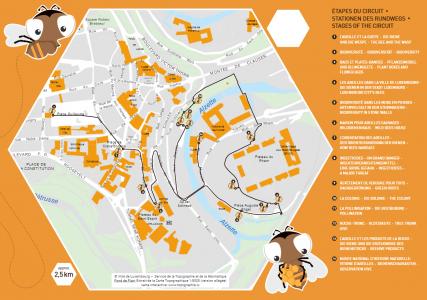 etape circuit parcours abeille kideaz