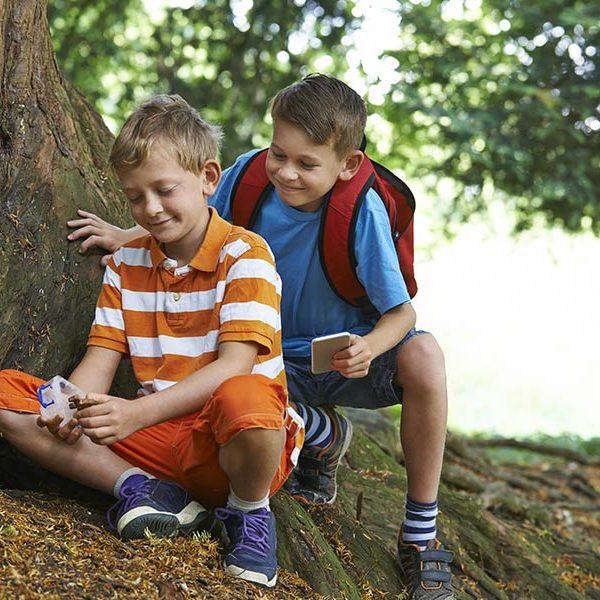 kideaz geocaching foret enfants recherche explorer