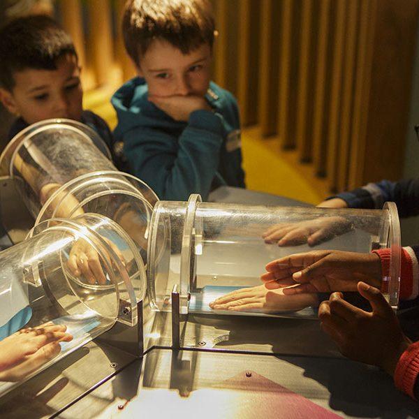 kideaz houtopia houffalize belgique activite enfants